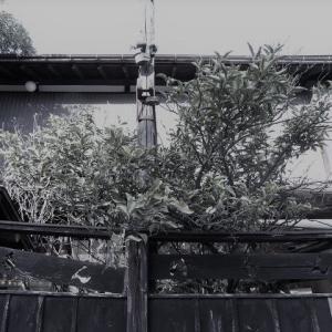【東京都】八王子市「田町遊廓」「八王子花街」201812