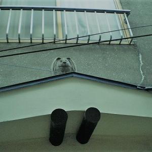 【神奈川県】横須賀市船越「皆ヶ作カフェー街」201203・201808