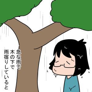 雨の日限定のお友達