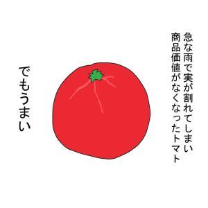 商品価値がなくなったトマト