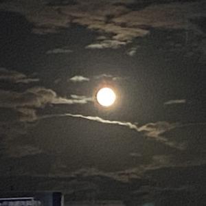 お月様が綺麗です♪