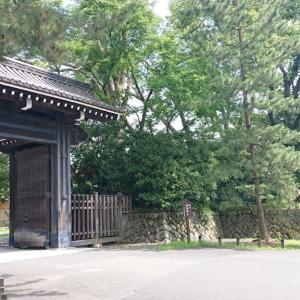 京都史跡巡り -2- 元離宮二条城〜序章〜
