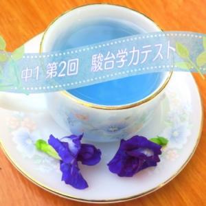 第2回 駿台学力テスト (8月/中1)