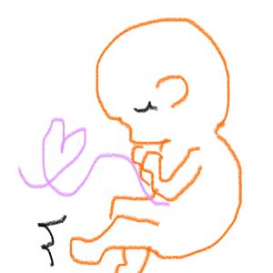 胎内記憶について息子に質問してみた件