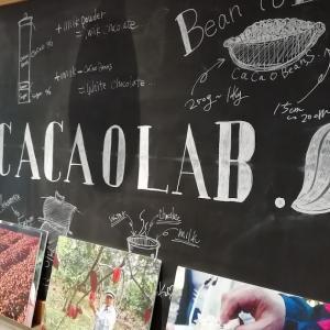 特別な体験!カカオ豆からチョコ作り日帰り旅