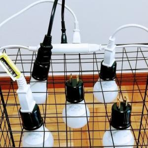 材料はほぼダイソー(ライトも)!LED水耕栽培キットをかんたんに自作