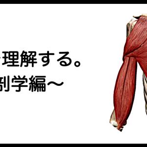 肩甲帯を理解する。〜解剖学編〜