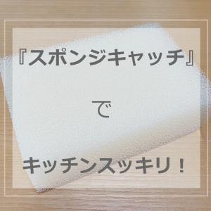 【セリア】スポンジキャッチでキッチンスッキリ!