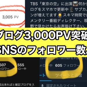 【途中経過報告】ブログ3,000PV突破!SNSフォロワー数の状況。