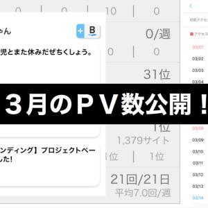 【月間報告】3月のPV数公開!