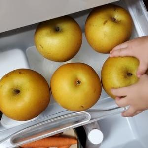 【子どもと暮らす】人生で一番おいしいと思った「梨」と5分で冷蔵庫掃除