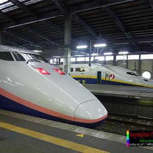 [502] 異系列コンビ 新潟駅編