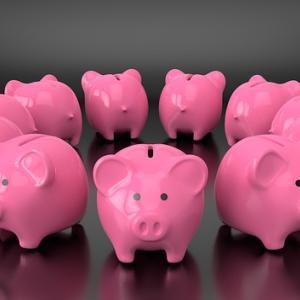 政府「自粛期間で経済滞ってるから給付金出すわ」愚民「貯金したろ!」