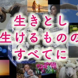 【解放と癒し】すべての人種・すべての国民・全人類・地球・そしてすべての生命体のための祈り