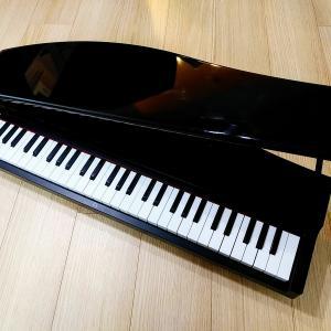 知育におすすめの楽器⭐3歳の誕生日プレゼントをKORGのマイクロピアノにしてみた話