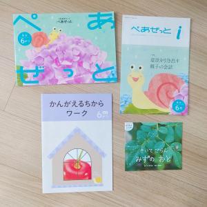 【飛び級Z会】Z会幼児コース年少向け6月号レビュー