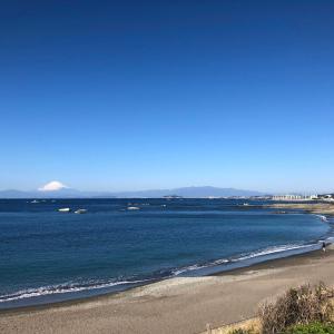 海岸は家族ずれで土日なみ…