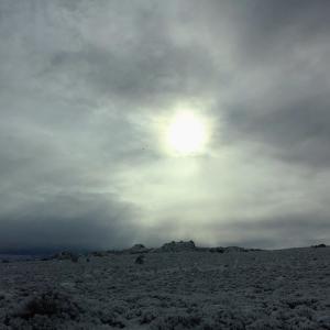 ☆ロードトリップ☆ユタからニューメキシコへ【19】雪の日のアーチーズ国立公園(ユタ州)