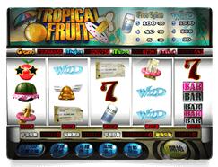 【スロット特集】Tropical Fruit