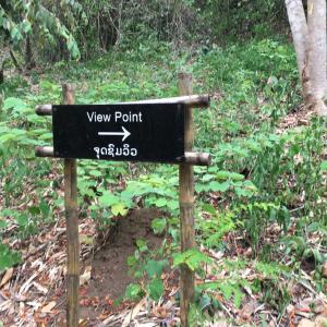 ラオス ルアンパバーン 川を越えて植物園へ