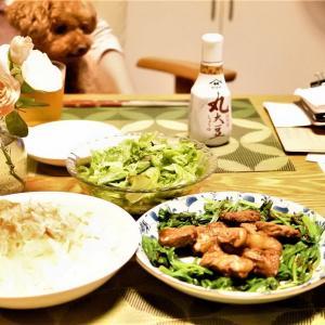 菜食主義ってダイエットに効果あんの・・・あなたの努力次第です この