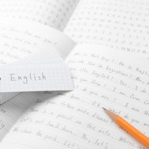 小学校英語やプログラミング学習のために、今から学習塾に入れる親や祖父母がいるらしいけど、馬鹿らしいからやめなさい。