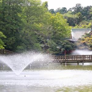 井の頭恩賜公園(東京都武蔵野市)桜・紅葉もきれい。駐車場など