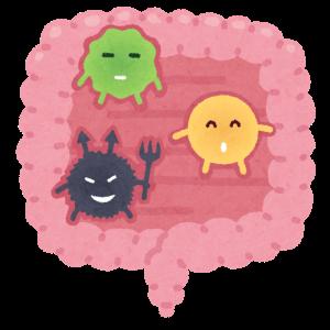 【免疫力とは?】免疫力を高める意外な食べ物(スッキリ)