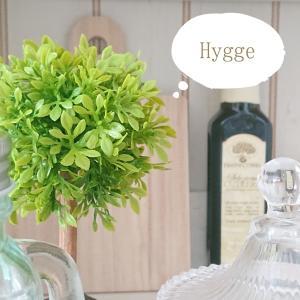 Hygge(ヒュッゲ)って知っていますか?