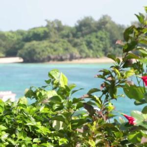 石垣の美ら海を、滑るように走る。クラシックな沖縄の船でクルーズ。  MEET with LOCA