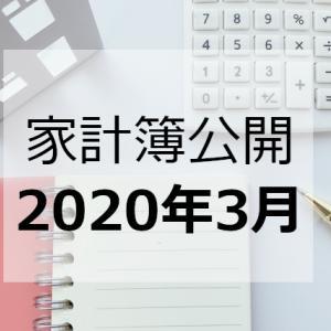 【2020年3月分】ワーママめいの家計簿公開