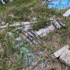 秘密基地の土地、レジャーシートを2重に敷いて3年目、雑草はそれらを突き破って出て来るね。