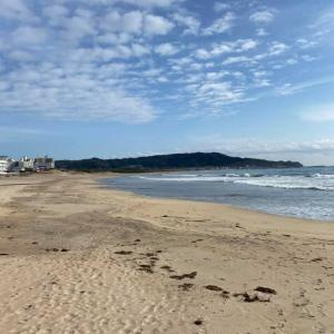 近所の海岸風景 2021-1-26  10時半ごろ 風速2~3m 無風に近く暖かい