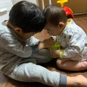 乳幼児の突然の発熱