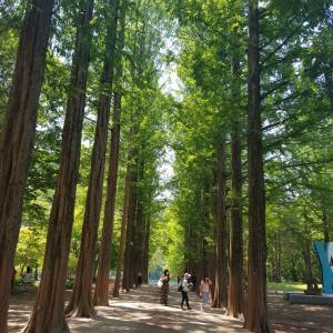カンウォンド旅行① 春川市 ナミソム