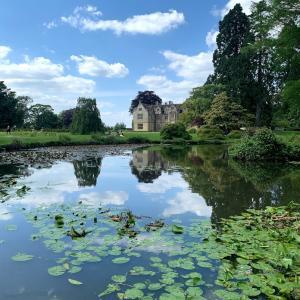 イギリスのモネ池?