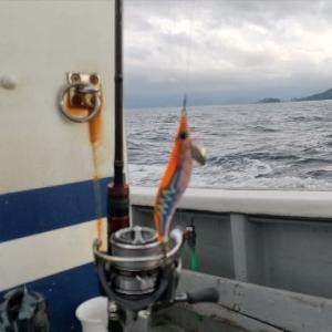 8月1日 超久々のイカメタル釣行