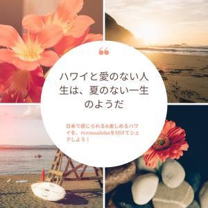 CROSS ALOHA@東京 file.3 ユッチャン。
