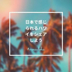 【特典有】CROSS ALOHA@東京 file.10 COCONUT GLEN'S