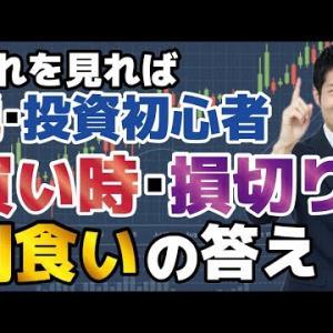 【脱・投資初心者】買い時・損切り・利食いの正解は?利益を出しやすくする方法を投資顧問が徹底的に解説。バフェットのポートフォリオを見れば一目瞭然!