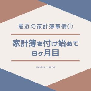 最近の家計簿事情①~家計簿を付け始めて8か月目~