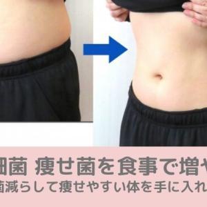 腸内細菌 痩せ菌を食事で増やす!デブ菌減らして痩せやすい体を手に入れる方法伝授
