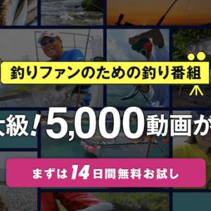 釣りビジョンVODを14日間無料お試し!内容充実の専門動画サービスを紹介