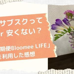 お花のサブスクリプションは安いの?「お花の定期便Bloomee LIFE」を利用した感想