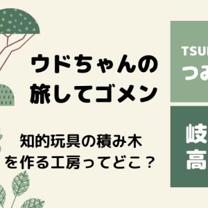 ウドちゃんの旅してゴメン 岐阜県高山市のさるぼぼがモチーフの知育玩具のお店はどこ?白百合工房のTSUMIBOBOつみぼぼや場所についても!