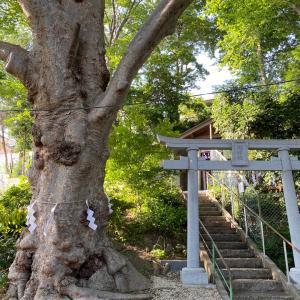 お瀧神社へ、統合失調症の弟と巡礼の旅