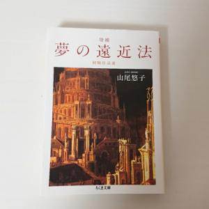 まるで熱に浮かされた夢のよう。精緻な幾何学の幻想世界へ― 山尾悠子『夢の遠近法』を読んだ感想