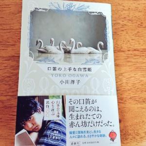 ピュアで美しい、お砂糖細工のような短編集。小川洋子『口笛の上手な白雪姫』感想