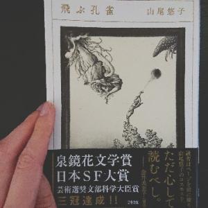 なぜか懐かしい白昼夢のようなー山尾悠子『飛ぶ孔雀』の感想