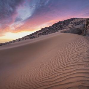 空想の砂漠をただよう